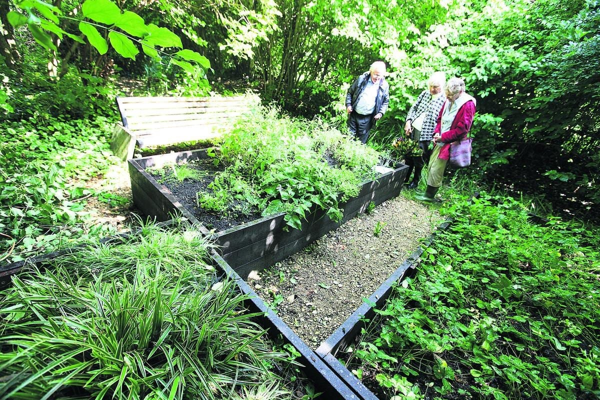 The demonstration wildlife garden is awarded an OSCA Commendation in 2012