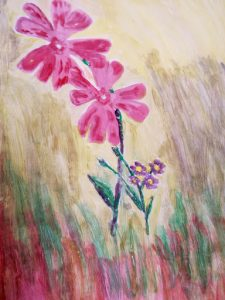 Red Campion painting by OUWG member